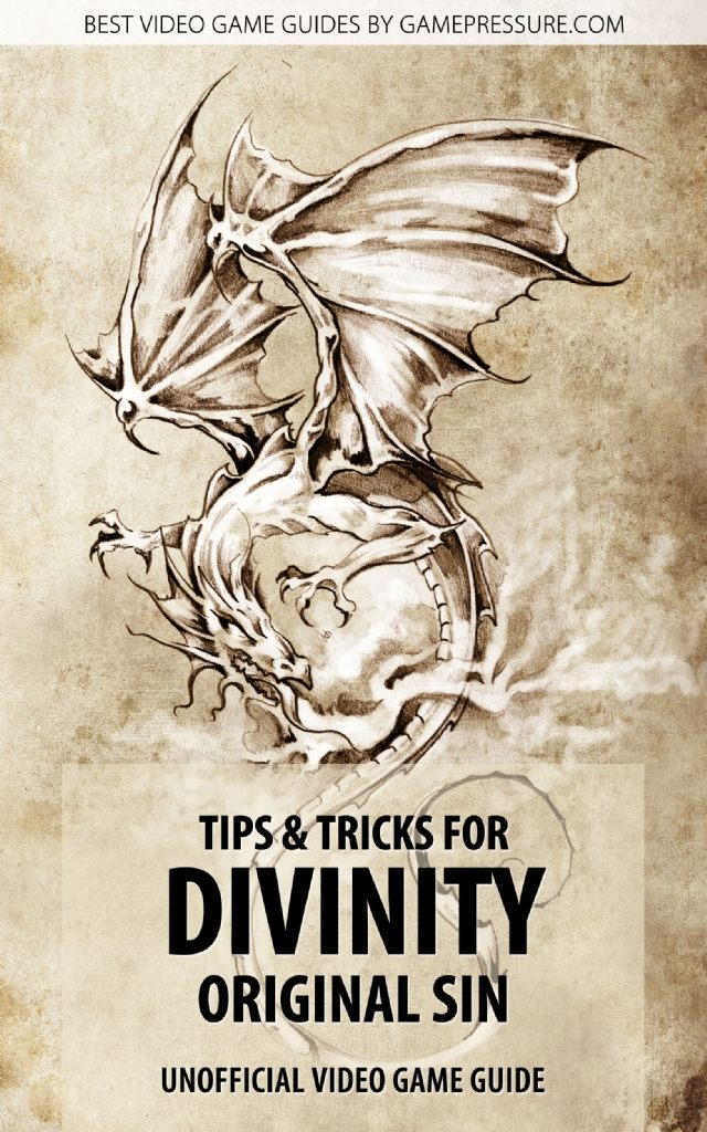 Tips & Tricks for Divinity Original Sin - Unofficial Video Game Guide
