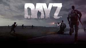 DayZ - ArmA 2 mod Game Guide